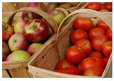 精诚软件食品安全条码追溯系统解决方案