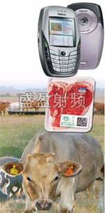 ScoringAg推出RFID牲畜跟踪系统