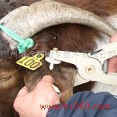 牲畜电子耳标管理系统