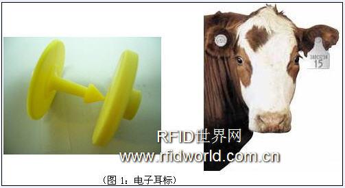基于RFID技术的动物识别管理解决方案