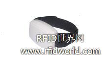 有源 RFID 在监狱中应用