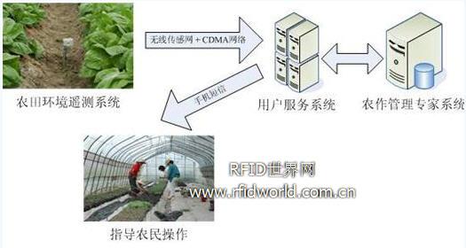 远程农作管理决策服务工程方案